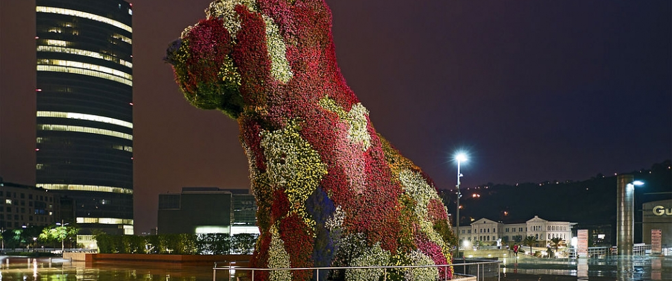 The puppy of my dreams, beautyfull flowers and a stunning size sculpture in the heart of Bilbao.
