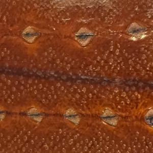 Diamond Sturgeon leather cognac brown