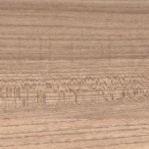 Elm in matt lacquer